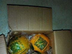 美赞橙赣南脐橙免费试吃活动客户收货实拍