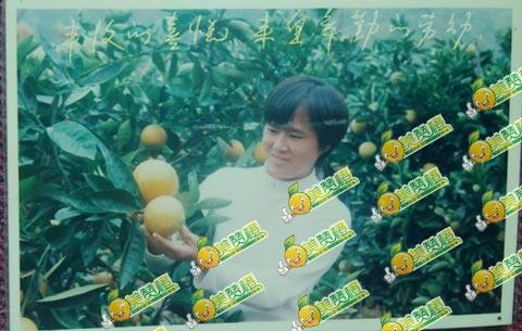 20年前的妈妈与赣南脐橙