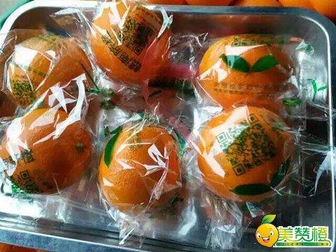 有实力的赣南脐橙供应商