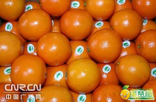 赣南脐橙专用果贴