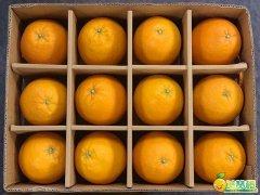 2018美赞橙提供礼品装订制,配套免费提货系统
