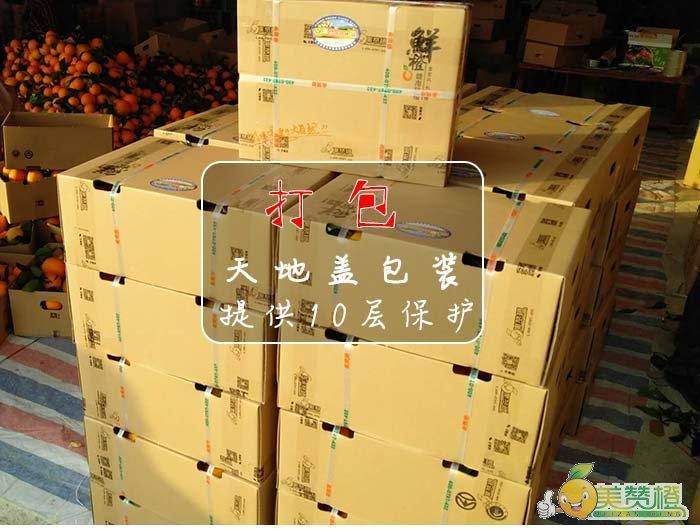 脐橙打包装箱,天地盖包装,提供10层保护