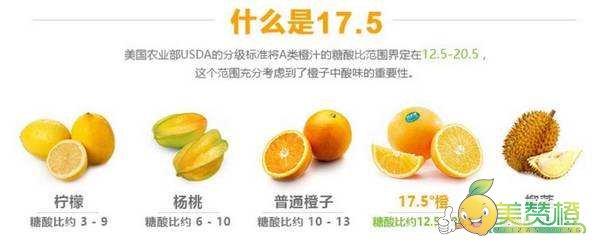 什么是17.5度橙